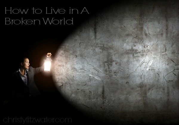 How to Live in A Broken World  -christyfitzwater.com