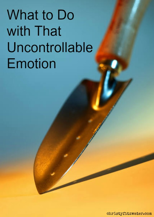 Getting to the root of your uncontrollable emotions. -christyfitzwater.com
