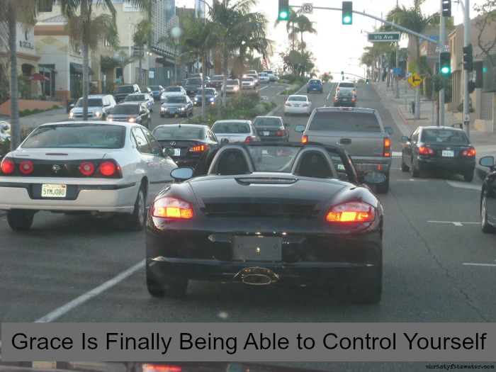 Rule following will not give you the self-control you desire.  -christyfitzwater.com