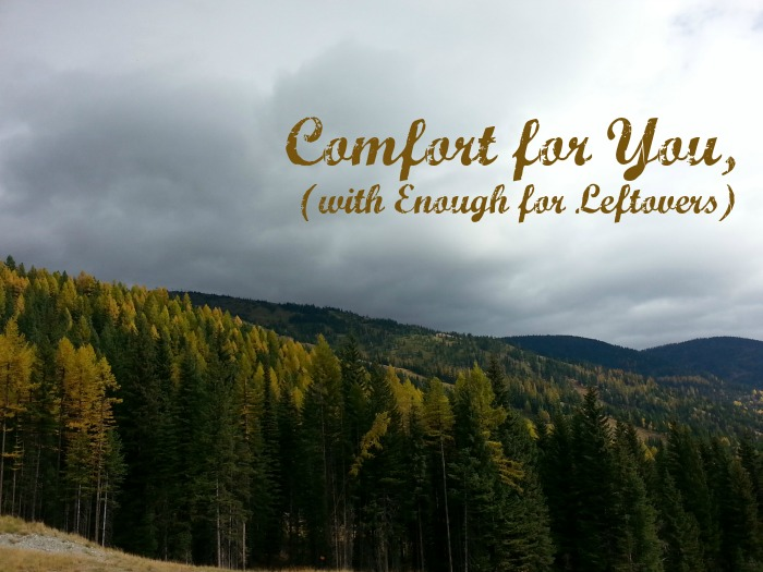 There is an abundance of comfort available to you. -christyfitzwater.com