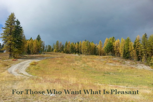 Do your actions say you hate what is pleasant?  -christyfitzwater.com