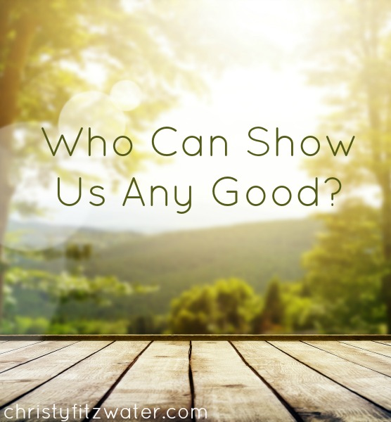 Who Can Show Us Any Good?  -christyfitzwater.com