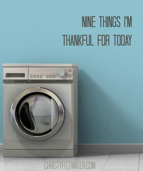 Nine Things I'm Thankful for Today  -christyfitzwater.com