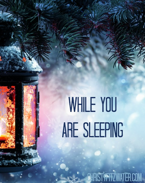 While You Are Sleeping  -christyfitzwater.com