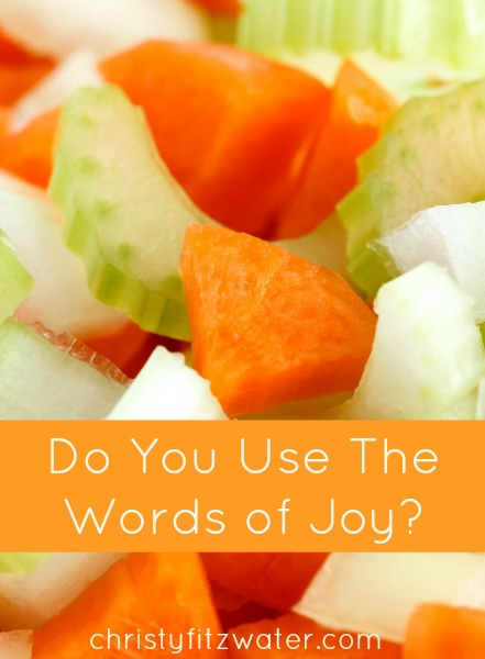 Do You Use The Words of Joy? -christyfitzwater.com