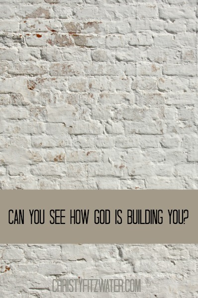 Can You See How God Is Building You? -christyfitzwater.com