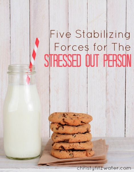 Five Stabilizing Forces for The Stressed-Out Person -christyfitzwater.com
