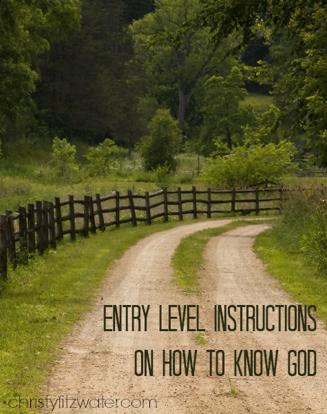 Entry Level Instructions on How to Know God -christyfitzwater.com