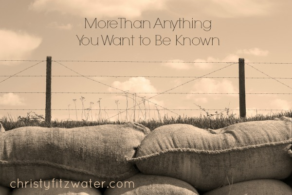 More Than Anything You Want to Be Known -christyfitzwater.com