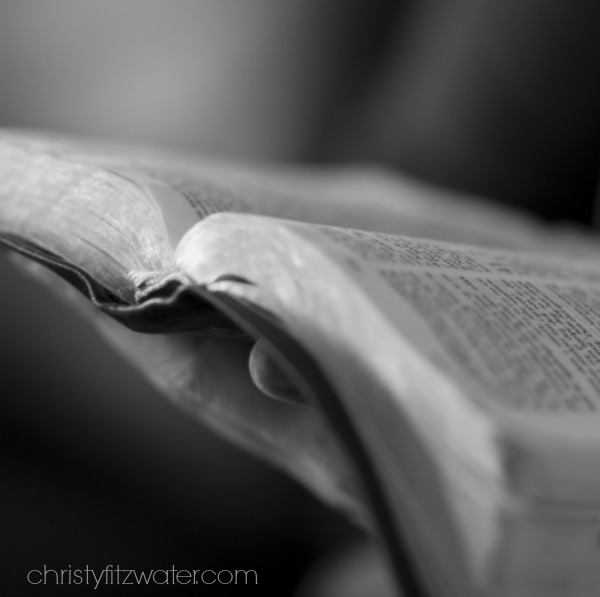 Do This to Add Spark to Your Daily Bible Reading -christyfitzwater.com