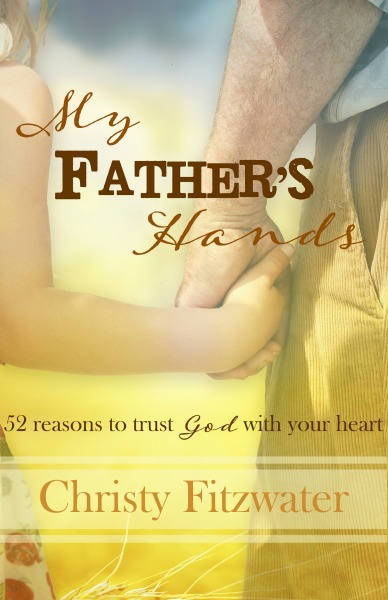 Can You Believe That God Is A Good Father? -christyfitzwater.com