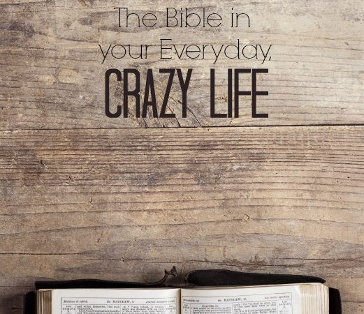 The Bible in Your Everday, Crazy Life -christyfitzwater.com