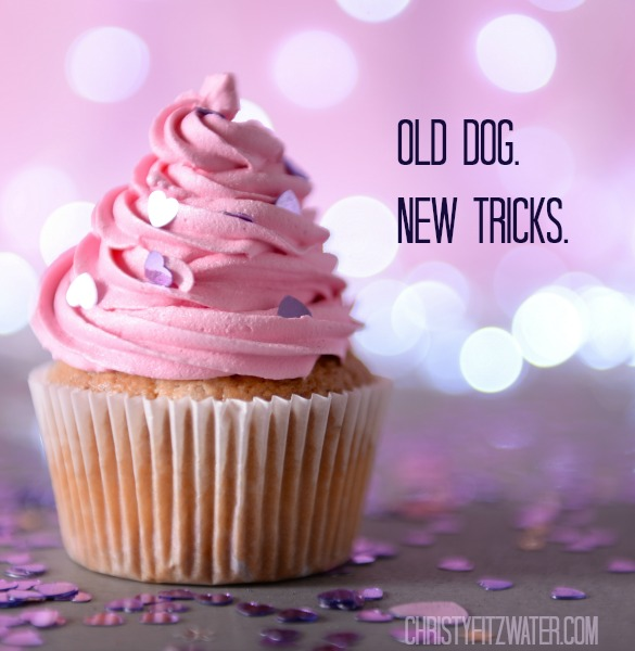 Old Dog. New Tricks. -christyfitzwater.com
