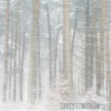 How to Manage A Season of High Stress -christyfitzwater.com